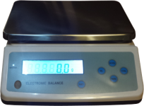 TalliScan Scale Solo
